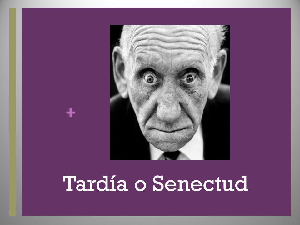 + Tardía o Senectud