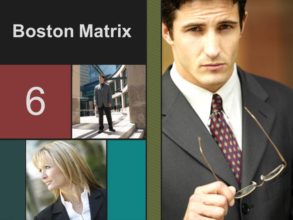 Boston Matrix 6