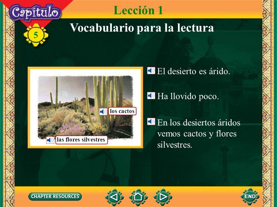 5 Vocabulario (English-Spanish) la serpientesnake árido(a)arid adelantado(a)advanced aterrador(a) terrifying temiblefearful, terrible desaparecer to disappear devorar to devour juntarse to join