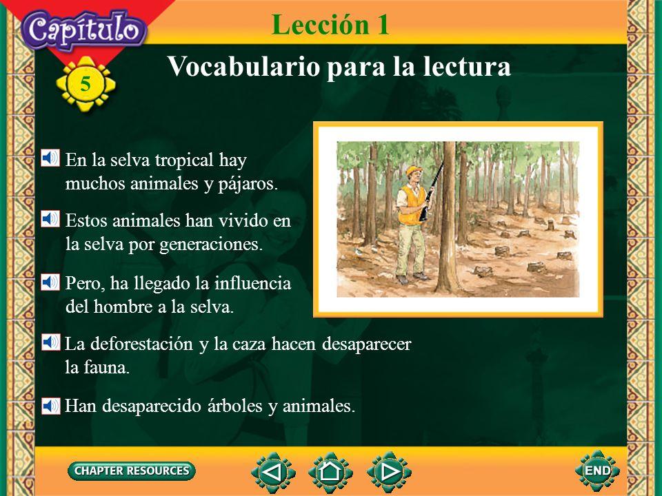 5 Lección 1 Vocabulario para la lectura La deforestación y la caza hacen desaparecer la fauna.