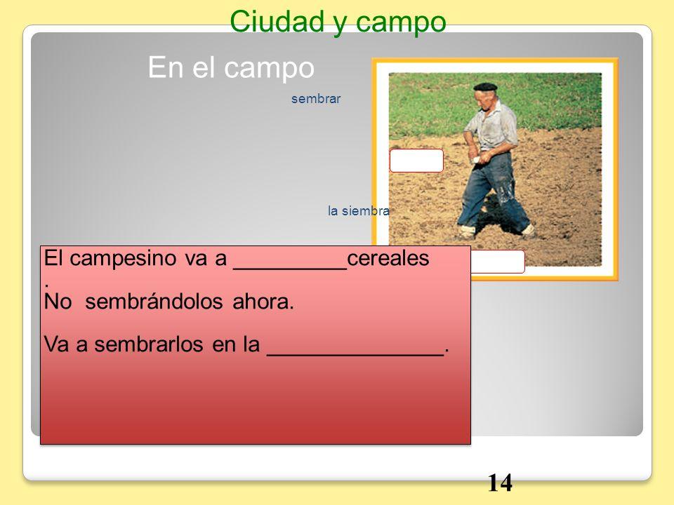 En el campo Ciudad y campo la siembra sembrar 14 El campesino va a _________cereales. No sembrándolos ahora. Va a sembrarlos en la ______________. El