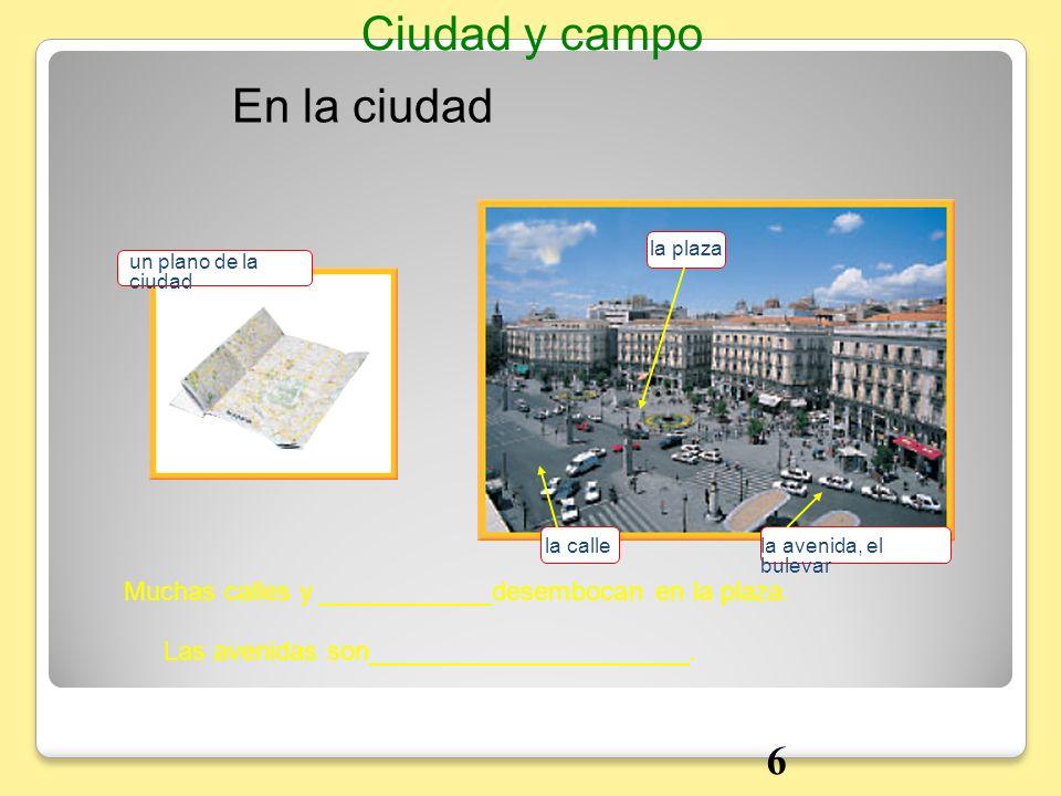 En la ciudad Ciudad y campo Muchas calles y ____________desembocan en la plaza. Las avenidas son______________________. un plano de la ciudad la plaza