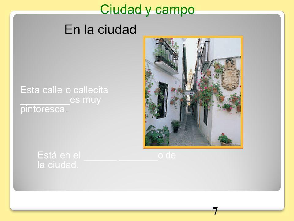 En la ciudad Ciudad y campo Esta calle o callecita _________es muy pintoresca. Está en el ______ _______o de la ciudad. 7
