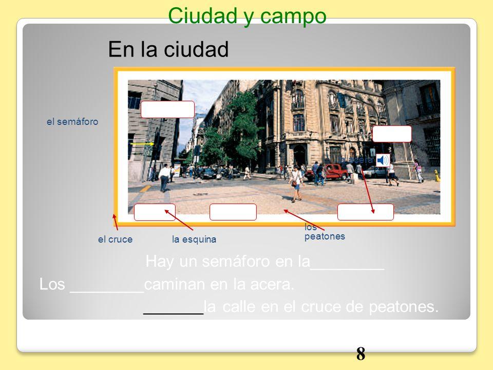 En la ciudad Ciudad y campo Hay un semáforo en la________ Los ________caminan en la acera. _________ la calle en el cruce de peatones. el semáforo el