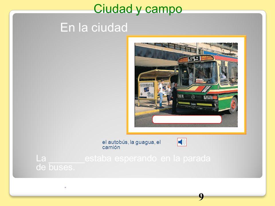 En la ciudad Ciudad y campo el autobús, la guagua, el camión La _______estaba esperando en la parada de buses. 9