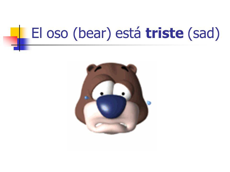 El oso (bear) está triste (sad)
