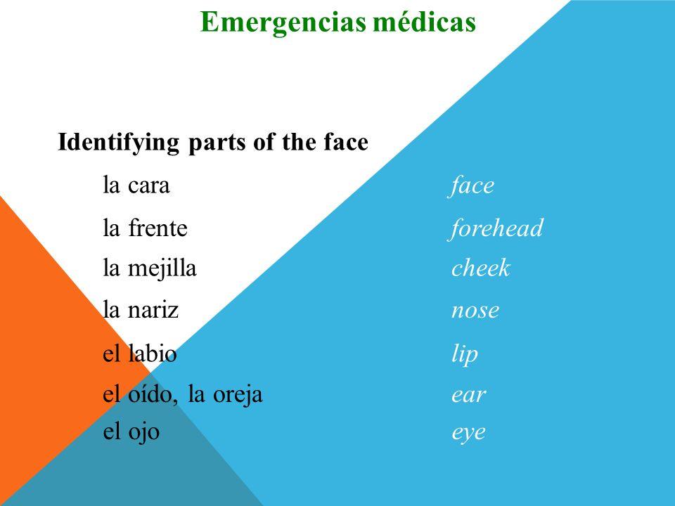 la muñecawrist Identifying parts of the body Vocabulario Emergencias médicas el dedofinger la piernaleg la rodillaknee el tobilloankle el piefoot (Spa