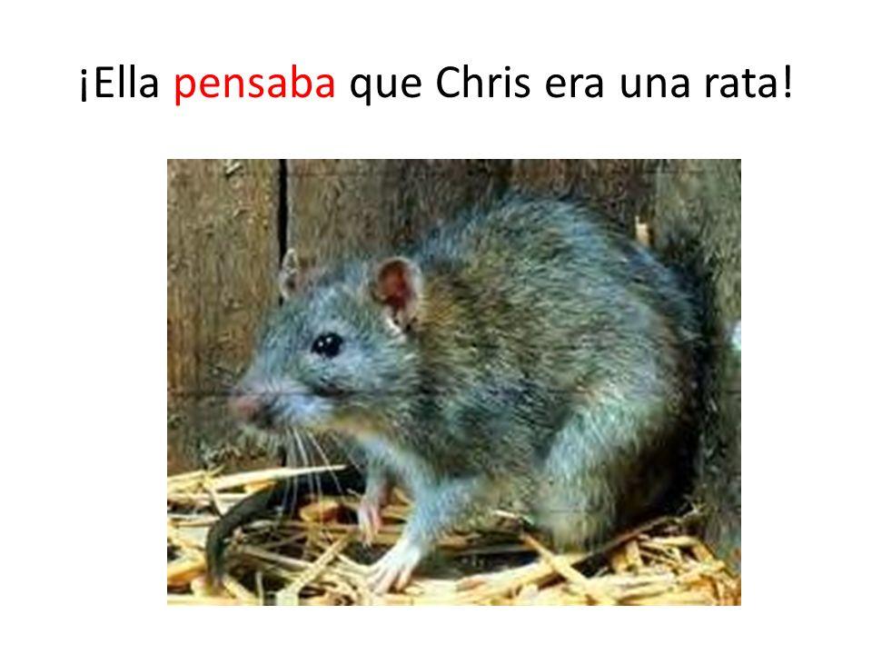 ¡Ella pensaba que Chris era una rata!
