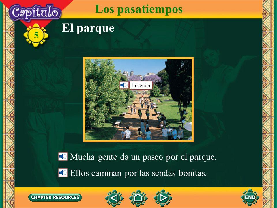 5 El parque Los pasatiempos el (parque) zoológico el mimo el payaso el mono la jaula