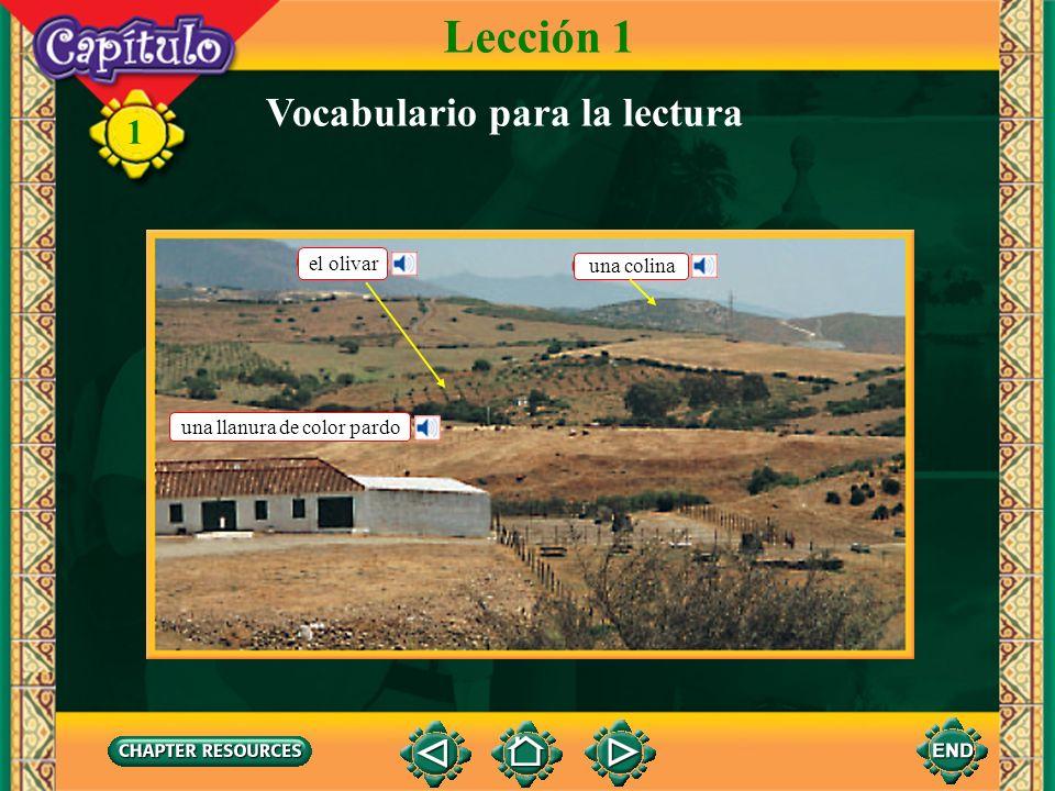 1 Vocabulario (Spanish-English) pagarto pay recorrerto travel through enlazarto connect, join Conversación