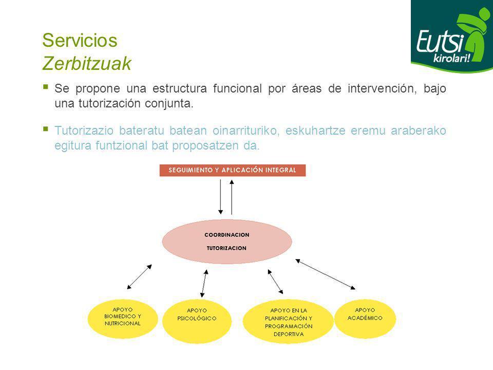 Servicios Zerbitzuak Se propone una estructura funcional por áreas de intervención, bajo una tutorización conjunta. Tutorizazio bateratu batean oinarr