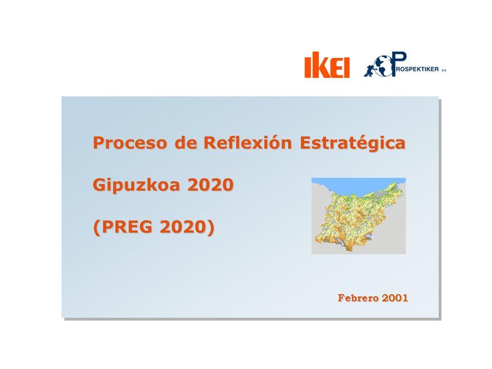 Proceso de Reflexión Estratégica Gipuzkoa 2020 (PREG 2020) Febrero 2001