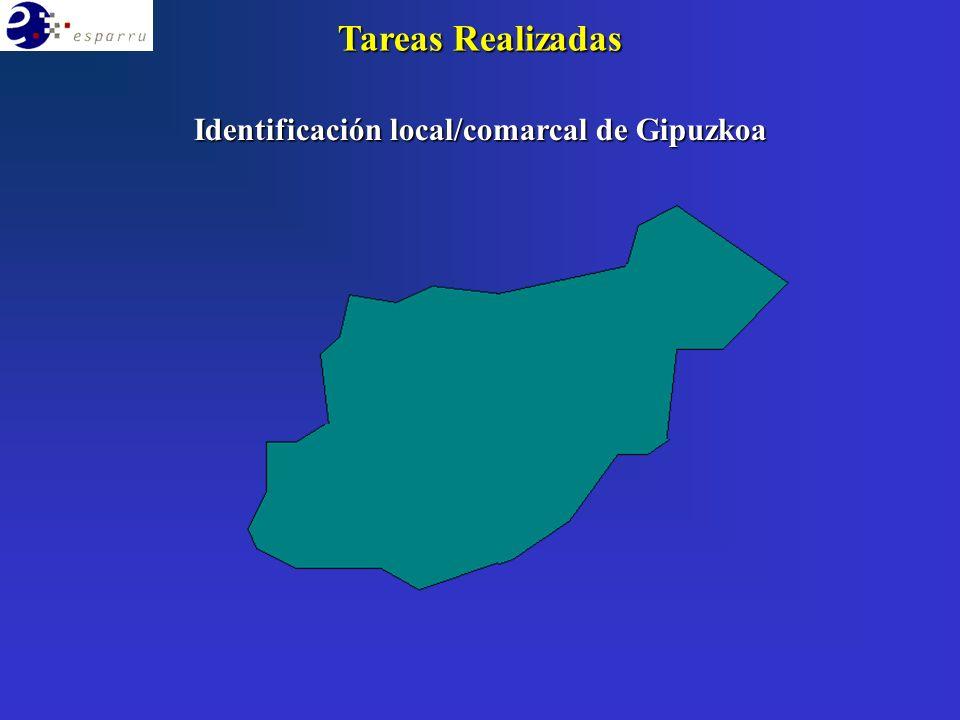 Identificación local/comarcal de Gipuzkoa Tareas Realizadas