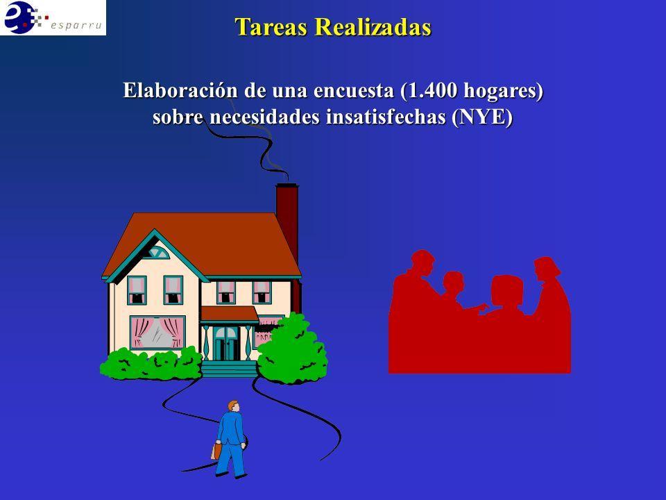 Elaboración de una encuesta (1.400 hogares) sobre necesidades insatisfechas (NYE)