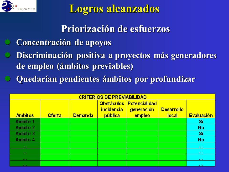 Logros alcanzados Priorización de esfuerzos lConcentración de apoyos lDiscriminación positiva a proyectos más generadores de empleo (ámbitos previables) lQuedarían pendientes ámbitos por profundizar