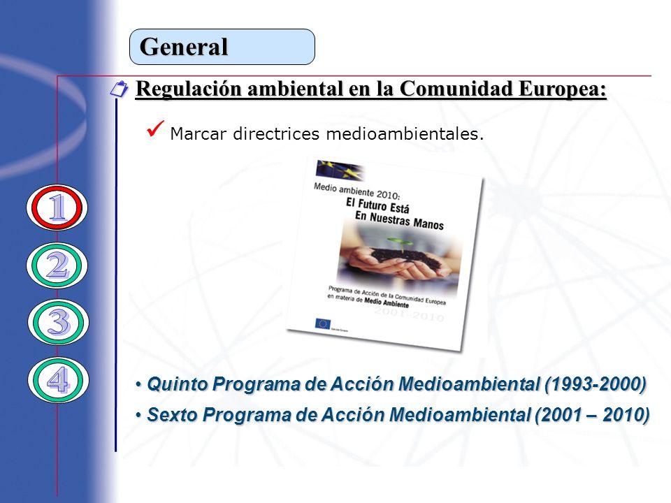 General Regulación ambiental en la Comunidad Europea: Regulación ambiental en la Comunidad Europea: Marcar directrices medioambientales. Quinto Progra