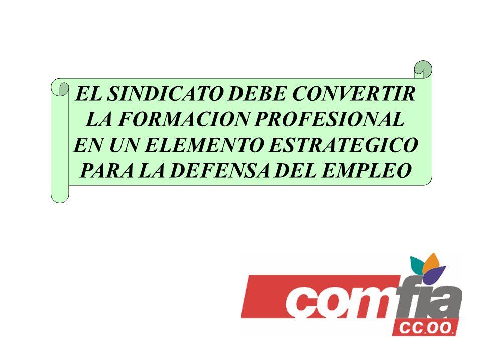 EL SINDICATO DEBE CONVERTIR LA FORMACION PROFESIONAL EN UN ELEMENTO ESTRATEGICO PARA LA DEFENSA DEL EMPLEO