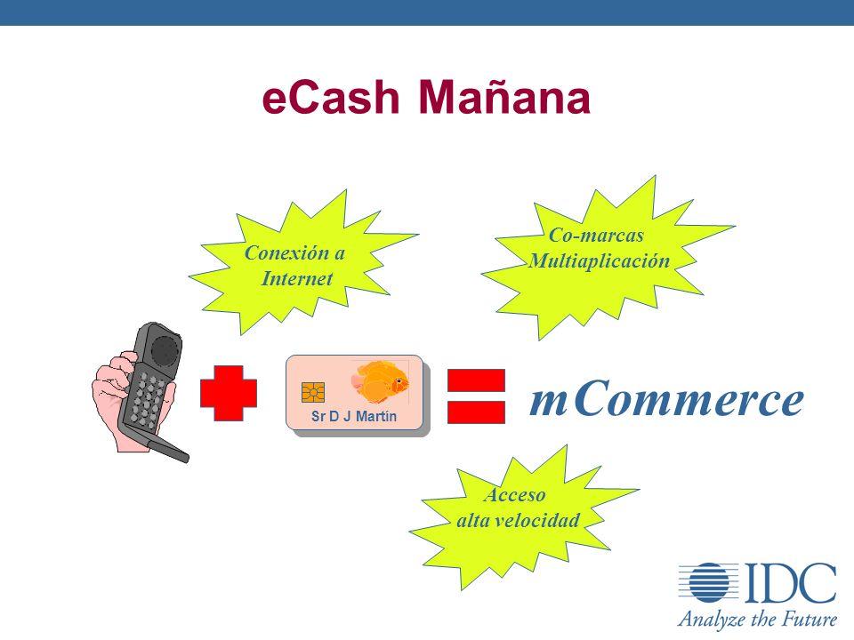 eCash Mañana Sr D J Martín mCommerce Acceso alta velocidad Conexión a Internet Co-marcas Multiaplicación