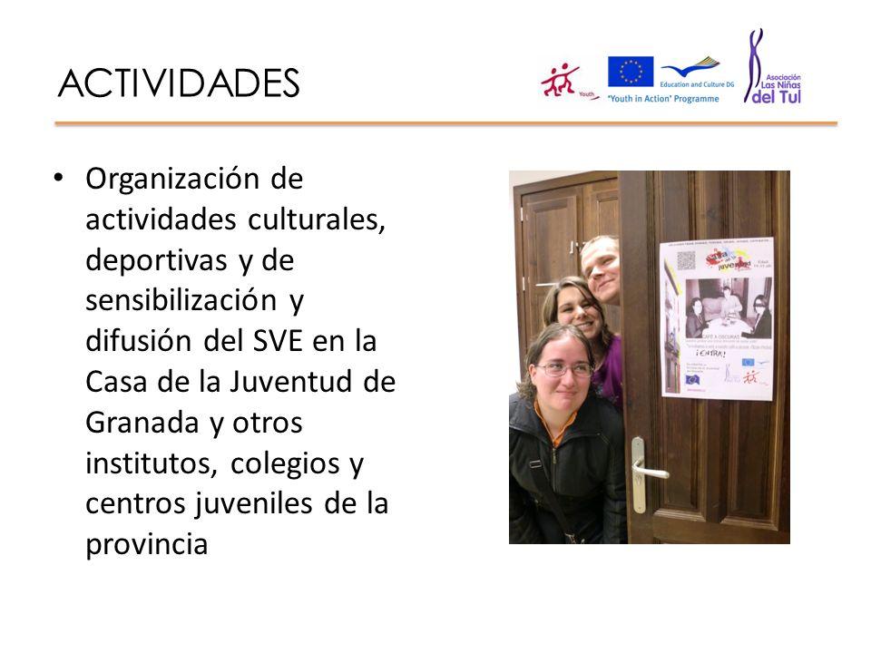ACTIVIDADES Organización de actividades culturales, deportivas y de sensibilización y difusión del SVE en la Casa de la Juventud de Granada y otros in
