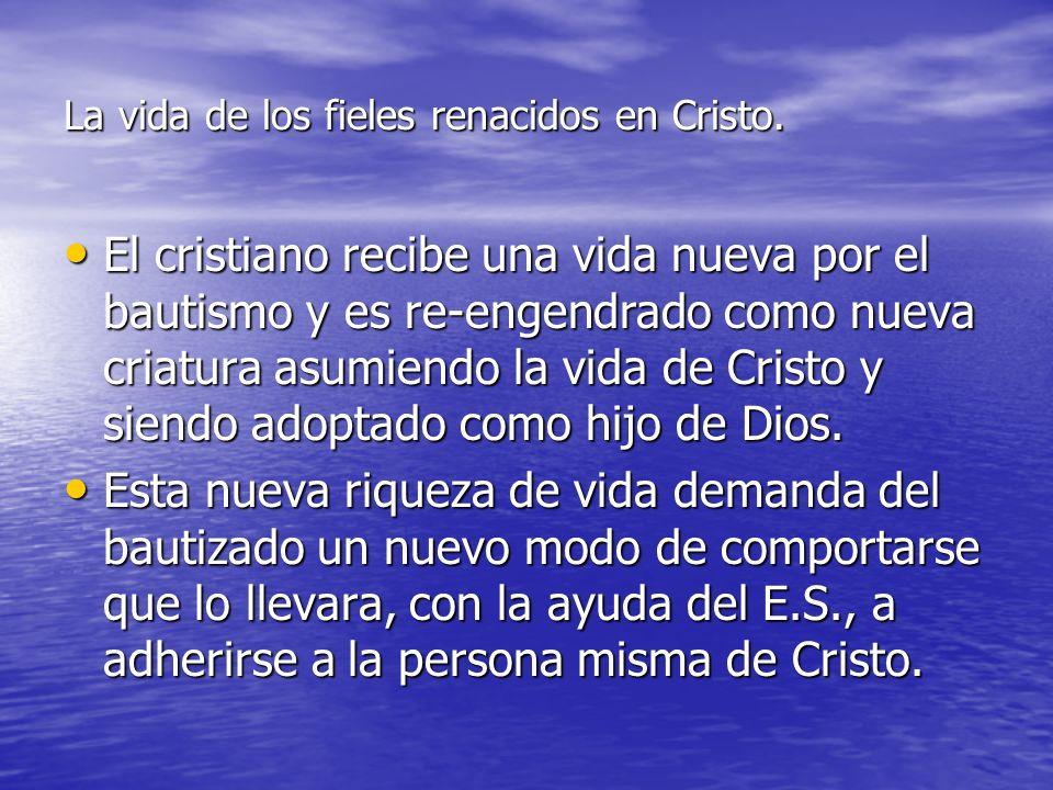 La vida de los fieles renacidos en Cristo. El cristiano recibe una vida nueva por el bautismo y es re-engendrado como nueva criatura asumiendo la vida