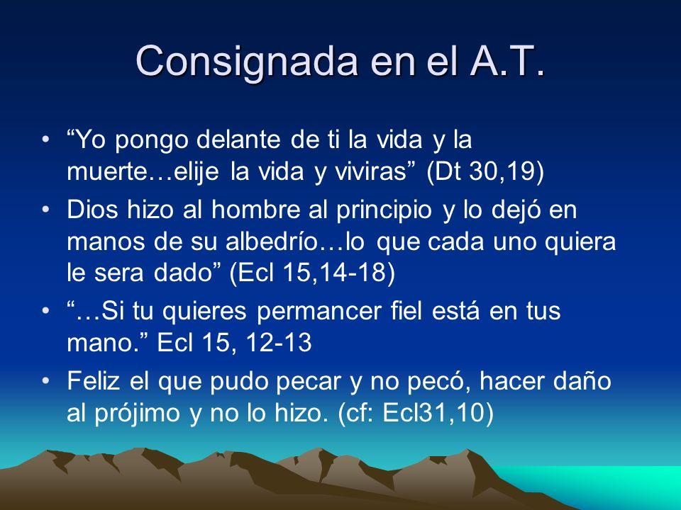 Consignada en el A.T. Yo pongo delante de ti la vida y la muerte…elije la vida y viviras (Dt 30,19) Dios hizo al hombre al principio y lo dejó en mano
