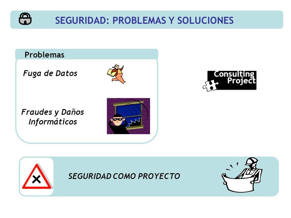 Fuga de Datos Problemas Fraudes y Daños Informáticos SEGURIDAD COMO PROYECTO SEGURIDAD: PROBLEMAS Y SOLUCIONES Consulting Project Consulting Project