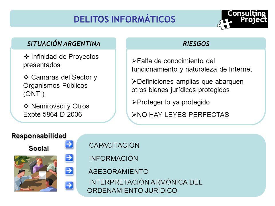 DELITOS INFORMÁTICOS SITUACIÓN ARGENTINA RIESGOS Consulting Project Consulting Project Infinidad de Proyectos presentados Cámaras del Sector y Organis