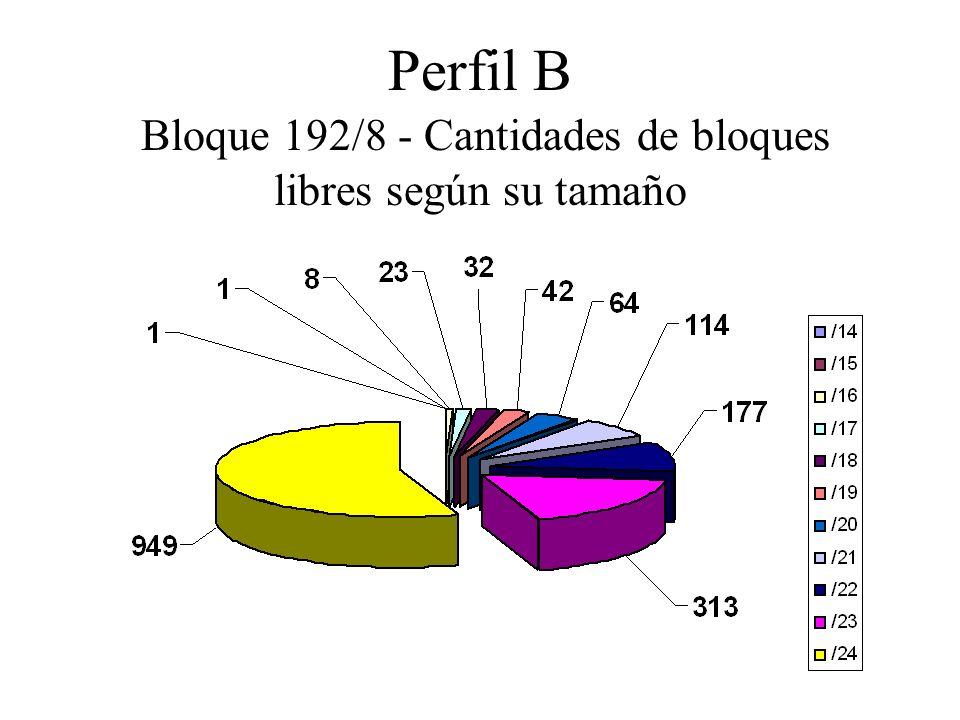 Perfil B Bloque 192/8 - Cantidades de bloques libres según su tamaño