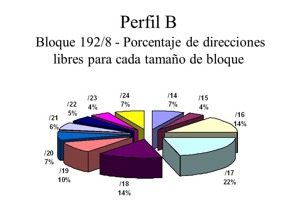 Perfil B Bloque 192/8 - Porcentaje de direcciones libres para cada tamaño de bloque