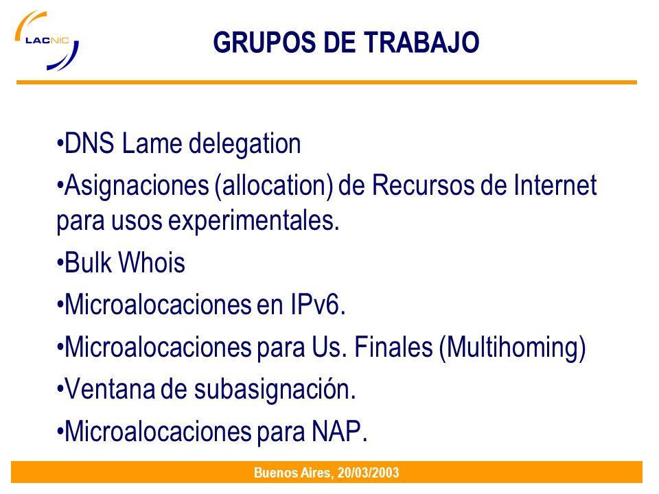 Buenos Aires, 20/03/2003 GRUPOS DE TRABAJO DNS Lame delegation Asignaciones (allocation) de Recursos de Internet para usos experimentales.