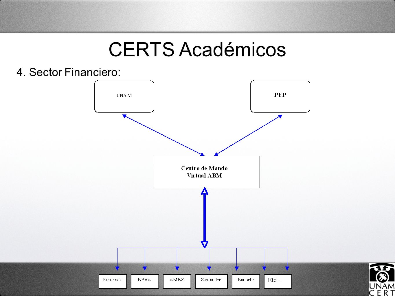 4. Sector Financiero: CERTS Académicos