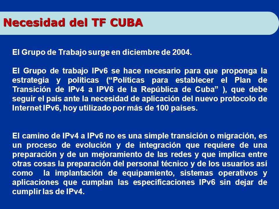 El Grupo de Trabajo surge en diciembre de 2004. El Grupo de trabajo IPv6 se hace necesario para que proponga la estrategia y políticas (Políticas para