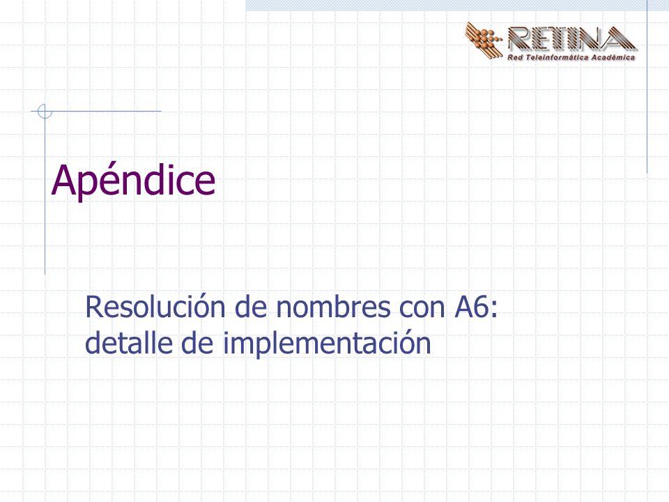 Apéndice Resolución de nombres con A6: detalle de implementación