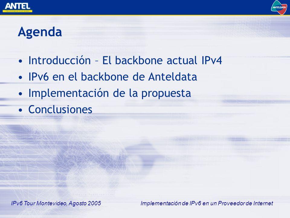 IPv6 Tour Montevideo, Agosto 2005 Implementación de IPv6 en un Proveedor de Internet Implementación de la propuesta Tareas Realizadas (2) –Definición de un plan de numeración IPv6 –Configuración de básica de los equipos –Configuración del enrutamiento Rutas estáticas + RIP como IGP BGP4 con otros AS –Testing Conectividad y Enrutamiento Otras funcionalidades –DHCP, ping, traceroute