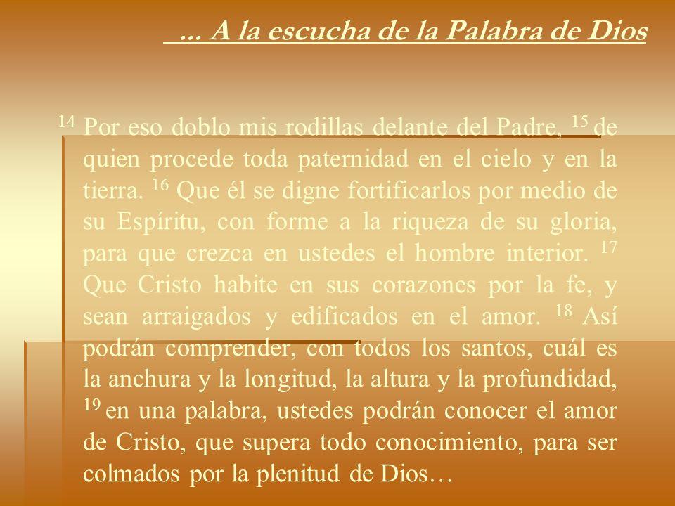... A la escucha de la Palabra de Dios 14 Por eso doblo mis rodillas delante del Padre, 15 de quien procede toda paternidad en el cielo y en la tierra