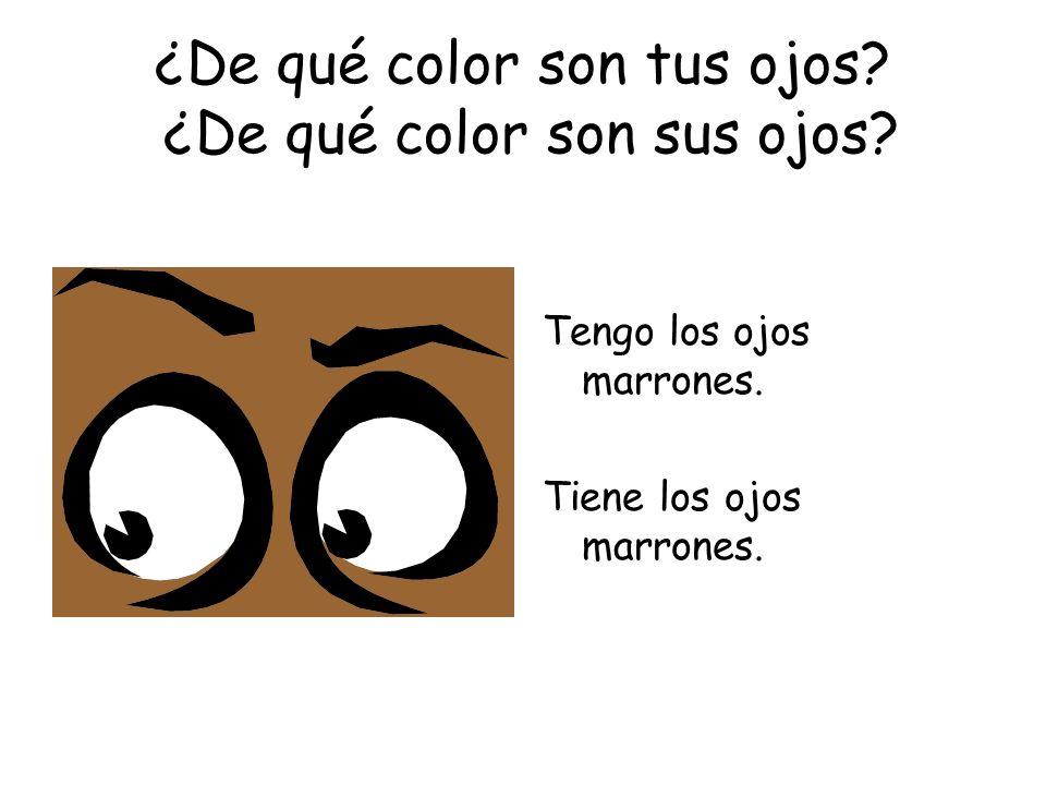 ¿De qué color son tus ojos? ¿De qué color son sus ojos? Tengo los ojos marrones. Tiene los ojos marrones.