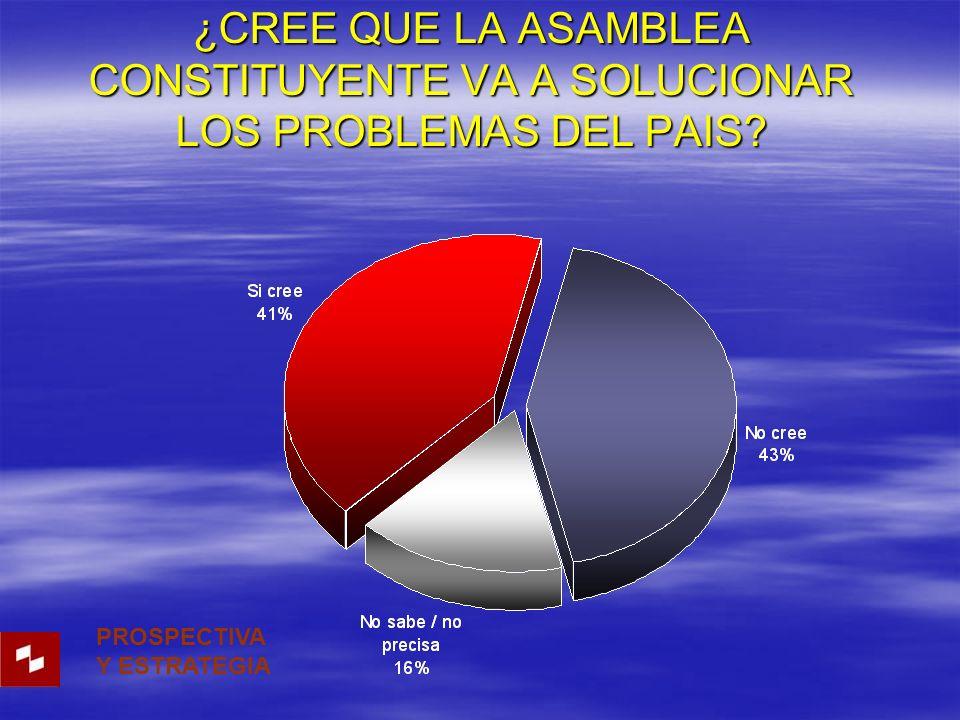 ¿CREE QUE LA ASAMBLEA CONSTITUYENTE VA A SOLUCIONAR LOS PROBLEMAS DEL PAIS.