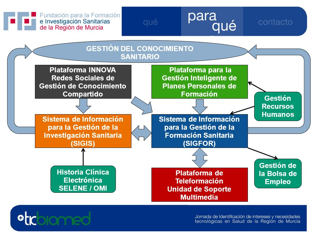 FFIS GESTIÓN DEL CONOCIMIENTO SANITARIO Sistema de Información para la Gestión de la Formación Sanitaria (SIGFOR) Sistema de Información para la Gesti