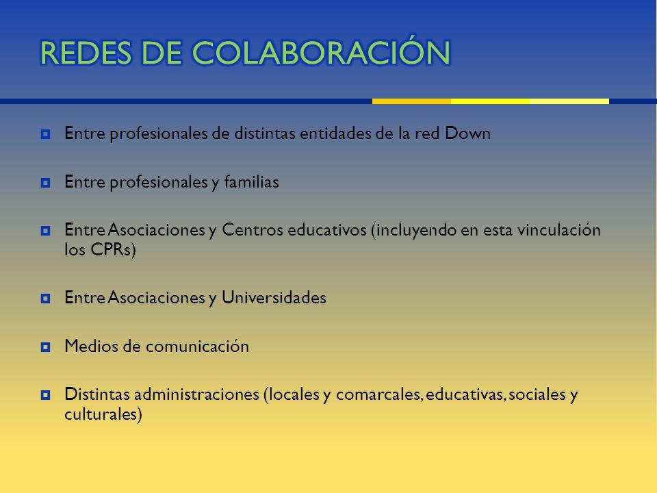 Entre profesionales de distintas entidades de la red Down Entre profesionales y familias Entre Asociaciones y Centros educativos (incluyendo en esta v