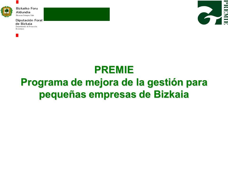 PREMIE Programa de mejora de la gestión para pequeñas empresas de Bizkaia