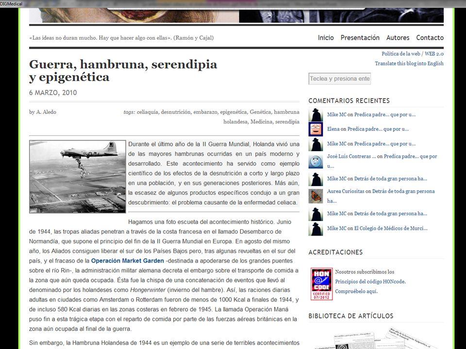 SanJORGE Hallazgos arqueológicos.Ciudad de Cosa- Sur de Italia..