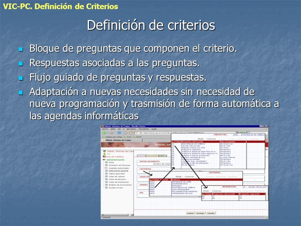 VIC-PC. Definición de Criterios Definición de criterios Bloque de preguntas que componen el criterio. Bloque de preguntas que componen el criterio. Re