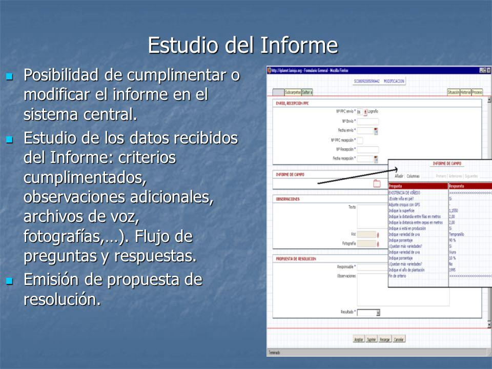Estudio del Informe Posibilidad de cumplimentar o modificar el informe en el sistema central. Posibilidad de cumplimentar o modificar el informe en el
