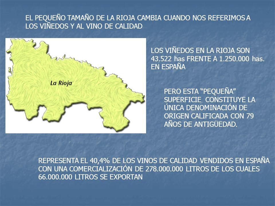 EL PEQUEÑO TAMAÑO DE LA RIOJA CAMBIA CUANDO NOS REFERIMOS A LOS VIÑEDOS Y AL VINO DE CALIDAD LOS VIÑEDOS EN LA RIOJA SON 43.522 has FRENTE A 1.250.000