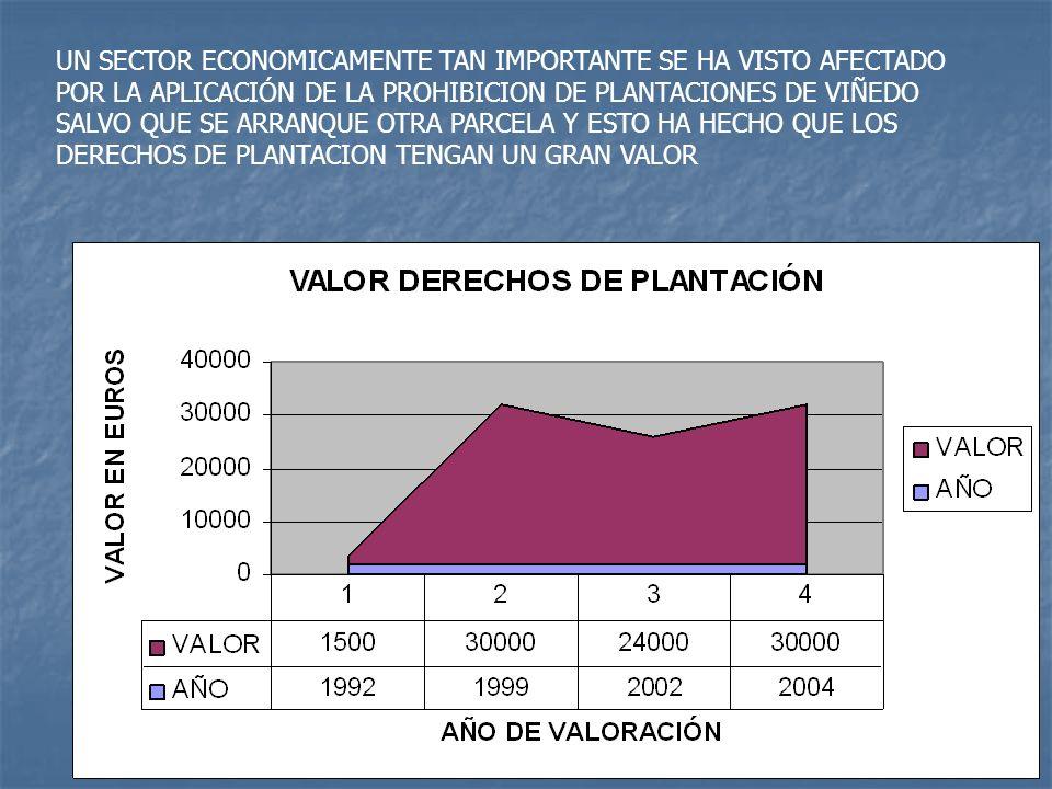 EN EL AÑO 2004 FINALIZAMOS LA REVISION DE TODAS LAS PARCELAS DE VIÑEDO Y ESTAMOS COMPROBANDO LAS DIFERENCIAS CON LOS VITICULTORES, PARA ELLO HEMOS DESARROLLADO UN SISTEMA DE CONTROL EN CAMPO QUE TIENE QUE RESPONDA A LAS SIGUIENTES CUESTIONES: 1.