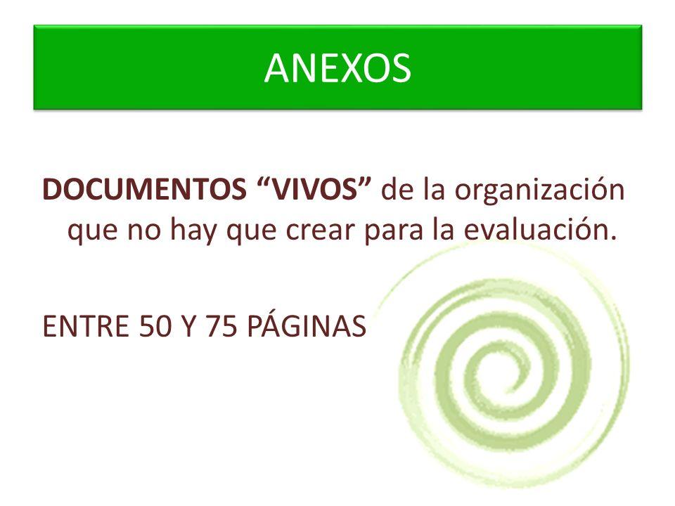 ANEXOS DOCUMENTOS VIVOS de la organización que no hay que crear para la evaluación.