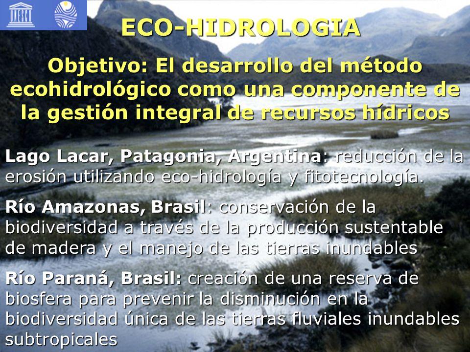 ECO-HIDROLOGIA Objetivo: El desarrollo del método ecohidrológico como una componente de la gestión integral de recursos hídricos Lago Lacar, Patagonia