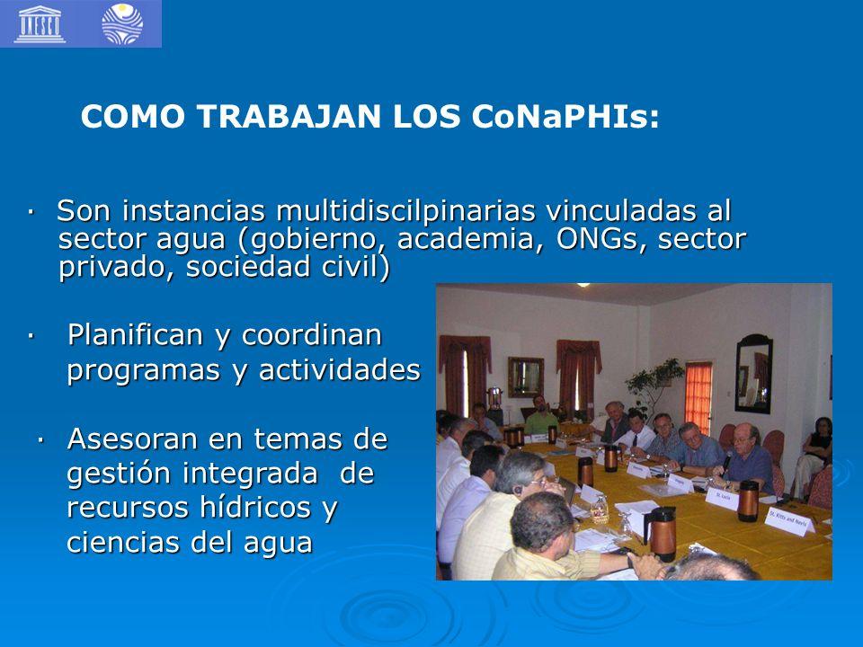 · Son instancias multidiscilpinarias vinculadas al sector agua (gobierno, academia, ONGs, sector privado, sociedad civil) · Planifican y coordinan pro
