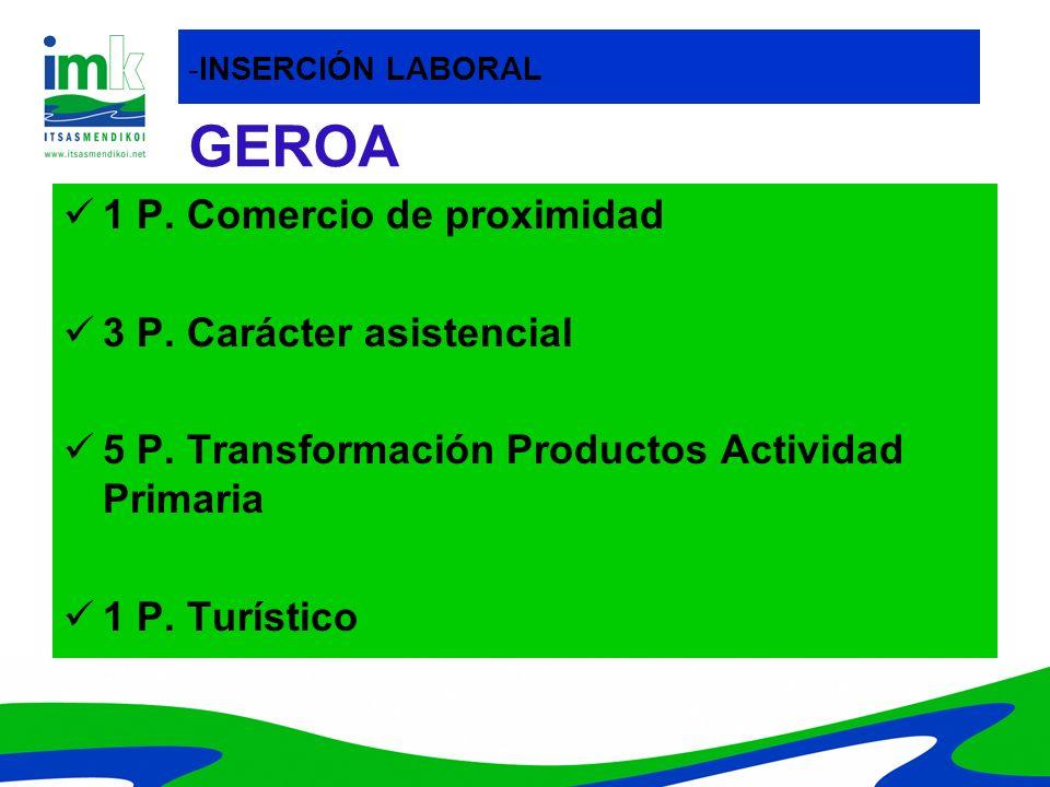 GEROA 1 P. Comercio de proximidad 3 P. Carácter asistencial 5 P. Transformación Productos Actividad Primaria 1 P. Turístico -INSERCIÓN LABORAL