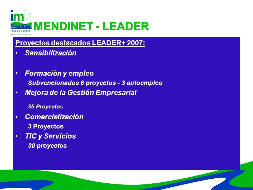 Proyectos destacados LEADER+ 2007: Sensibilización Formación y empleo Subvencionados 6 proyectos - 3 autoempleo Mejora de la Gestión Empresarial 35 Pr